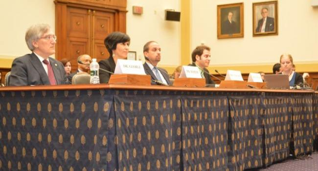 "Hearing on ""One Year Under Rouhani: Iran's Abysmal Human Rights Record"" before the Subcommittees on Africa, Global Health, Global Human Rights, June 19, 2014"