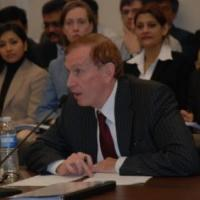 A panel member testifying at the hearing